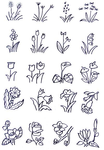 有规律的图画-花的画法  花的结构:   花由花瓣、花、花蒂、花枝、花叶组成.   注意